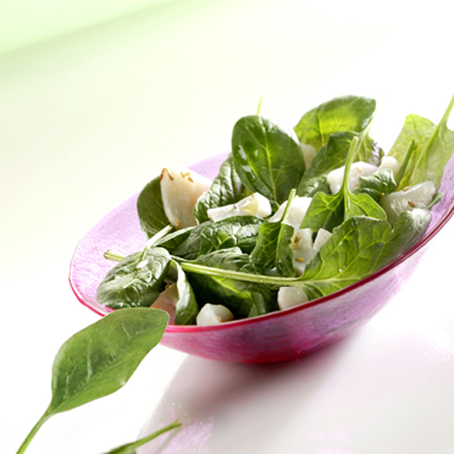 Recette culinaire : carpaccio de St Jacques et jeunes pousses d'épinard